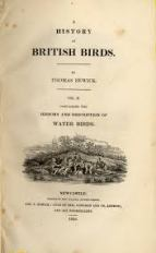 Beitish birds