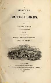 Beitish birds