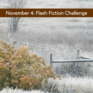 november-4 Frozen