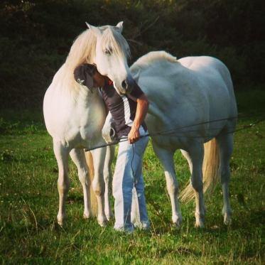 Horse Jan 2