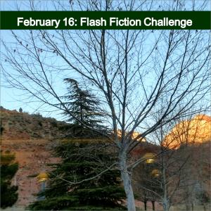 february-16