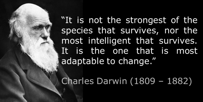 Resultado de imagen de quotes about adapt or die